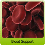 blood-support2.jpg